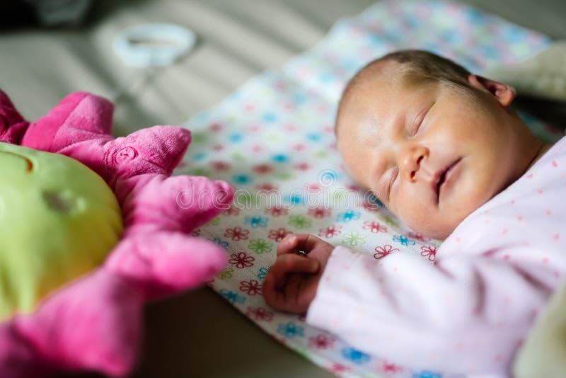 De pasgeborenen hebben heel wat rust nodig stock fotografie