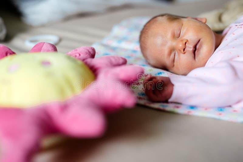 De pasgeborenen hebben heel wat rust nodig royalty-vrije stock fotografie
