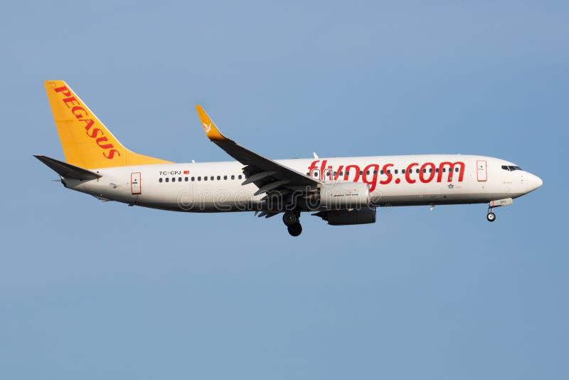 De passagiersvliegtuig die van Pegasus Airlines Boeing 737-800 tc-CPJ bij de Luchthaven van Istanboel landen Ataturk stock afbeelding