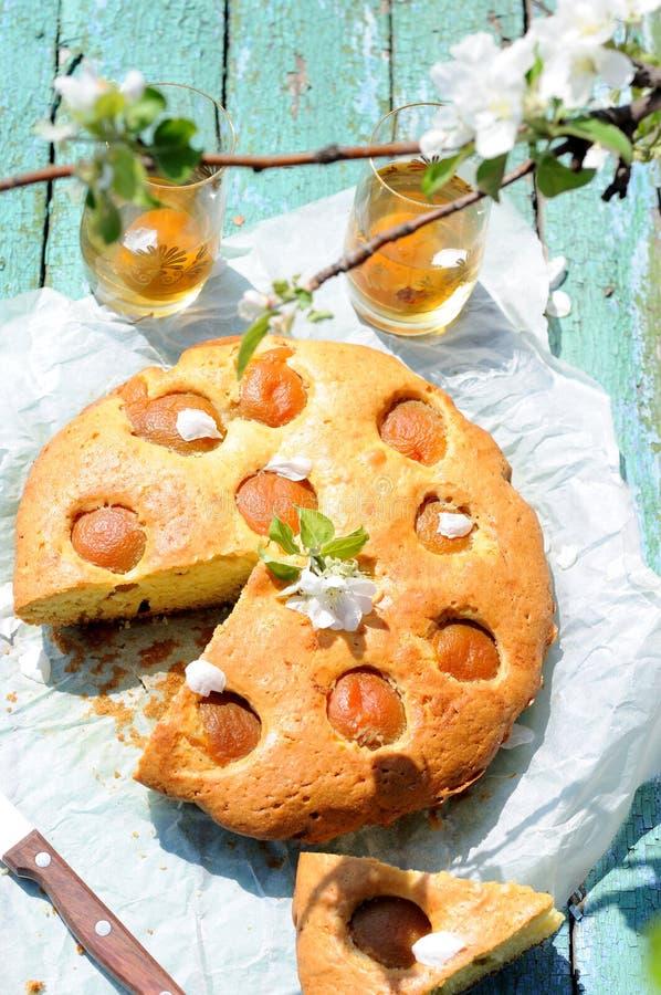 De pastei van de abrikoos stock fotografie