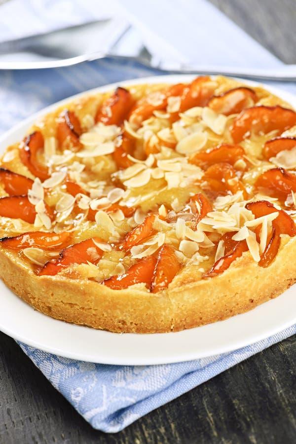 De pastei van de abrikoos en van de amandel royalty-vrije stock afbeeldingen