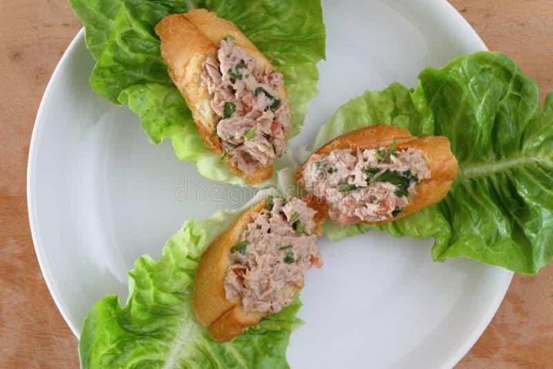 De pastei van de tonijn royalty-vrije stock afbeeldingen