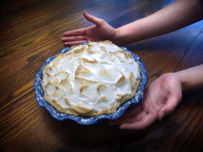 De Pastei van het Schuimgebakje van de citroen stock afbeelding