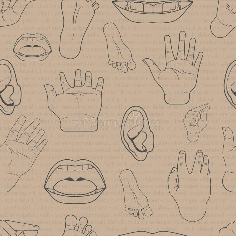 Is de patroon naadloze reeks lichaamsdelen het oorvoet van de handmond de stijl van het de tekeningsontwerp van de krabbelhand il vector illustratie