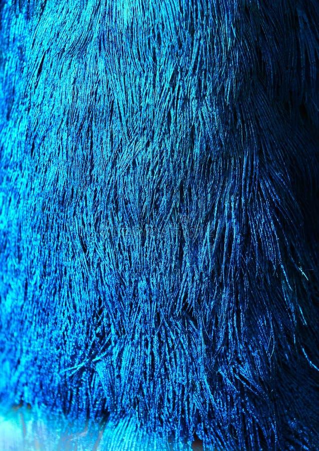 De pauw en de veren sluiten omhoog beeld royalty-vrije stock afbeelding