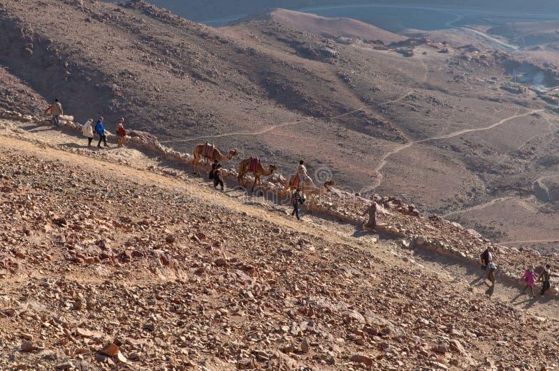 De pelgrims die van Sinai dalen zetten, Egypte op stock foto
