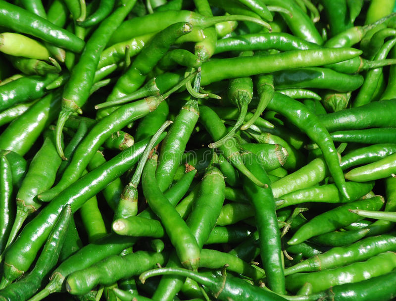 De peper van Spaanse pepers royalty-vrije stock afbeelding
