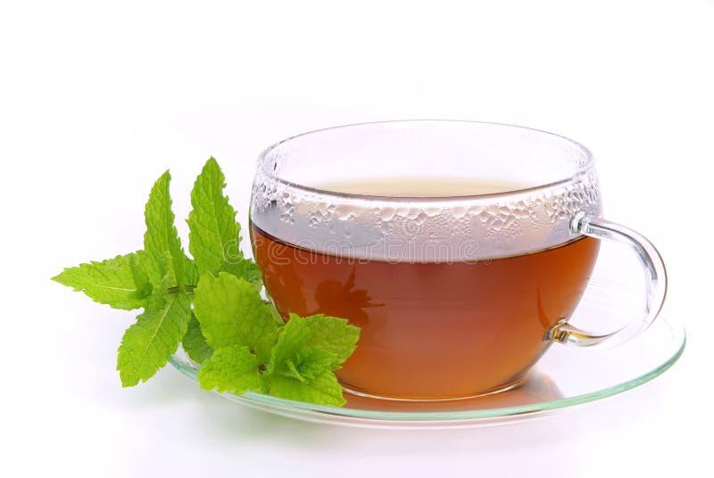 De Pepermunt van de thee stock fotografie
