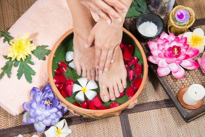 De perfecte schone Aziatische vrouwelijke voeten, de Mooie en elegante verzorgde meisjes` s hand raken haar voeten, Kuuroord, sch stock foto's