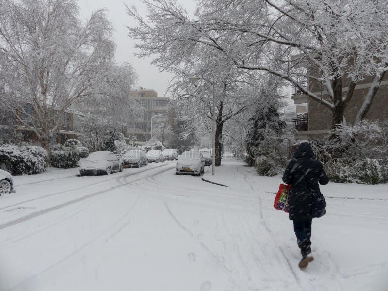 De persoon die op sneeuw lopen behandelde weg voorbij bomen en huizen in het stedelijke plaatsen stock afbeeldingen