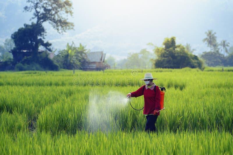 De pesticiden is schadelijk voor gezondheid royalty-vrije stock fotografie