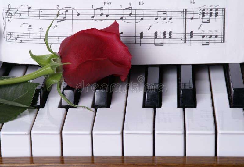 De piano met Rood nam toe royalty-vrije stock afbeeldingen