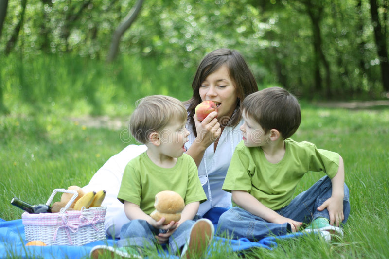 De picknick van de familie stock foto