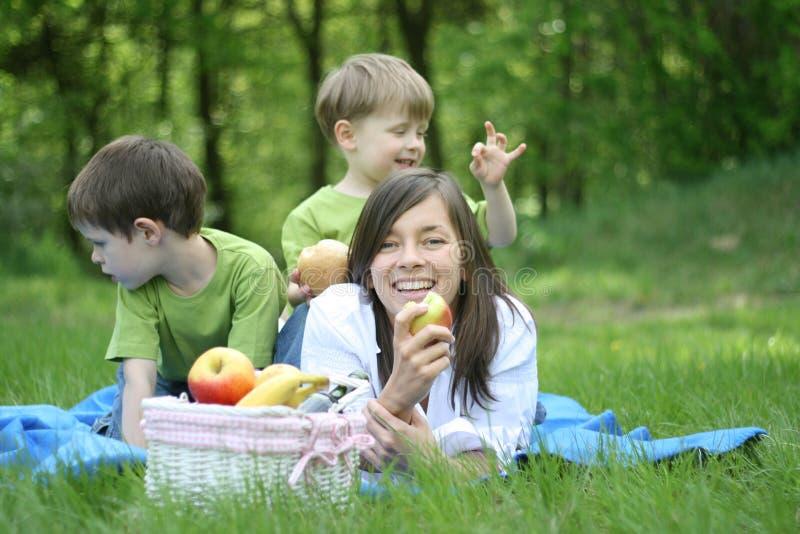De picknick van de familie