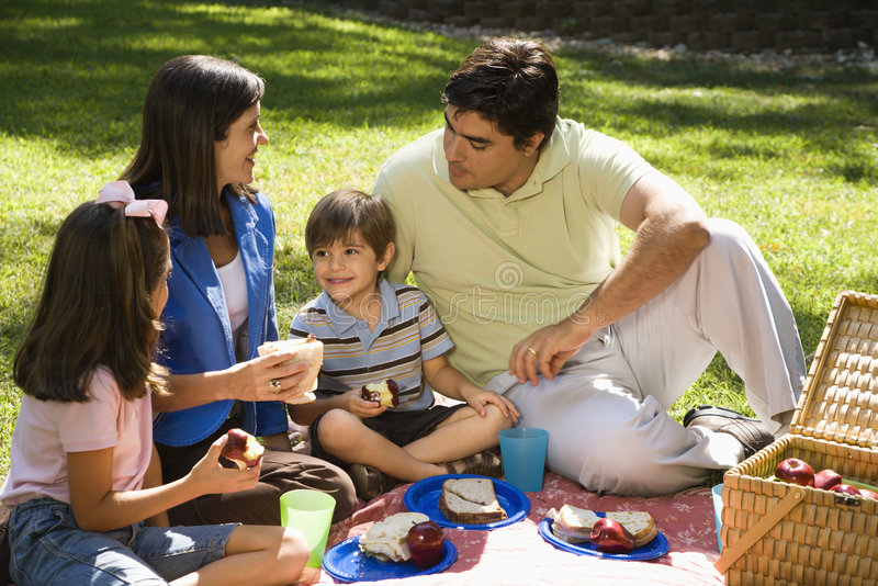 De picknick van de familie. royalty-vrije stock afbeeldingen