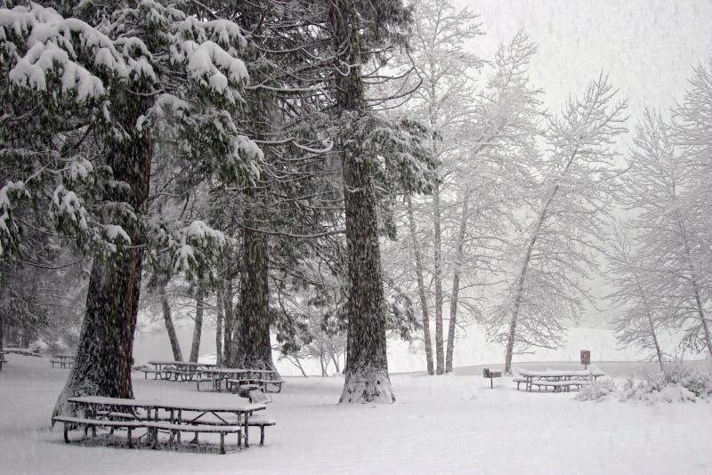 De Picknick van de winter royalty-vrije stock foto's