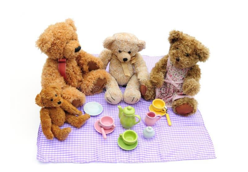 De picknick van teddyberen royalty-vrije stock foto's