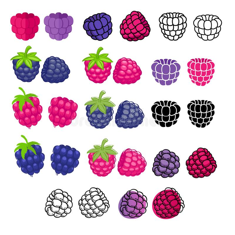 De pictogrammen grote reeks van Blackberry en van de framboos Verschillende stijlen royalty-vrije illustratie