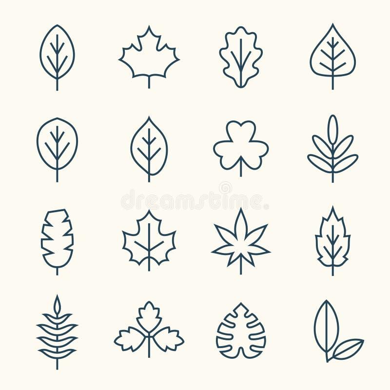 De pictogrammen van de bladlijn vector illustratie