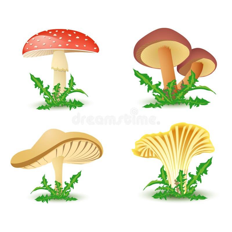 De pictogrammen van de paddestoel vector illustratie