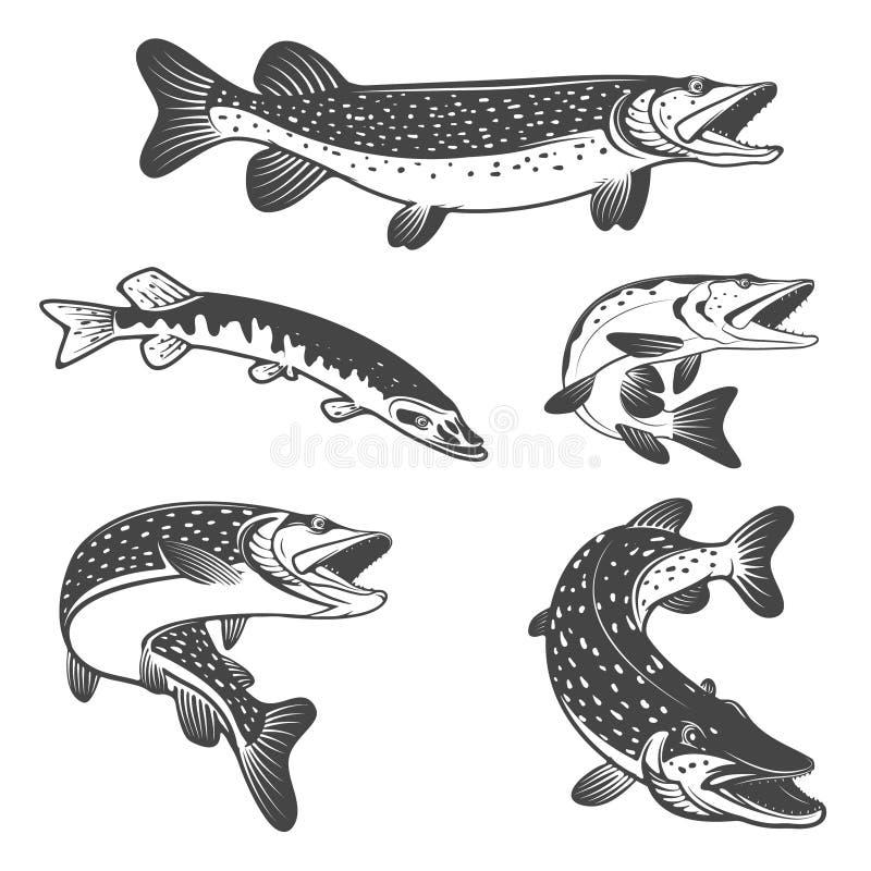 De pictogrammen van snoekenvissen Ontwerpelementen voor de visserij van club of team royalty-vrije illustratie