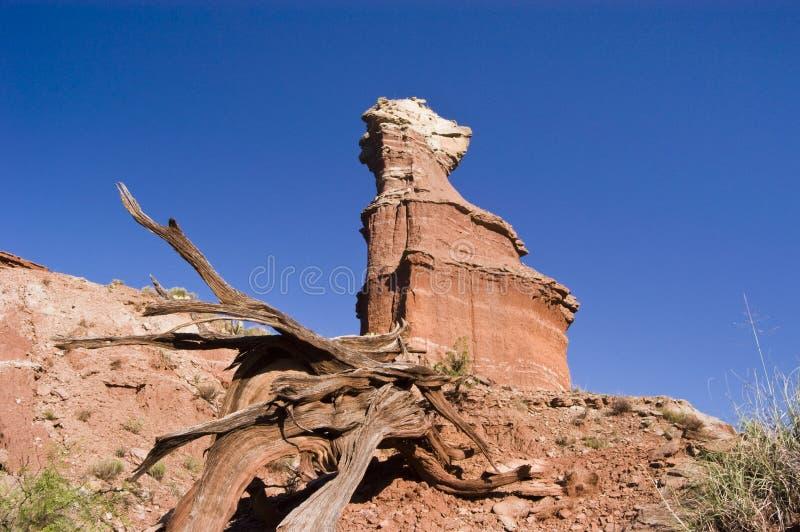De Piek van de vuurtoren in de Canion van Palo Duro stock fotografie