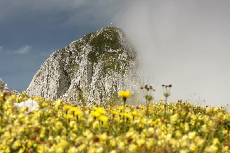 De piek van Maglic (2386m), de hoogste piek in Bosnia royalty-vrije stock foto's