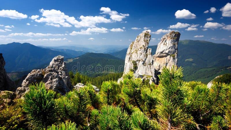 De piekberg van damesrotsen in Bucovina-Provincie op de zomerdag, Roemenië stock afbeeldingen