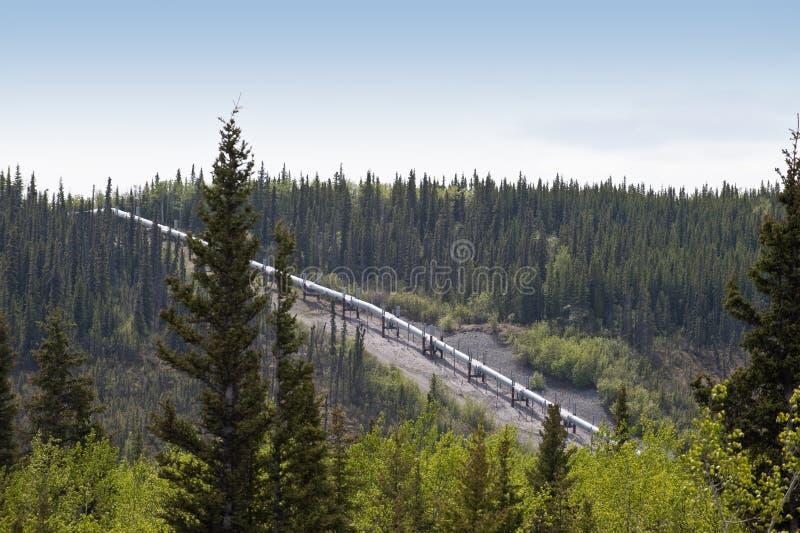 De pijpleiding van Alaska stock afbeeldingen