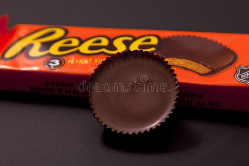 De Pindakaaskop van Reese stock afbeelding