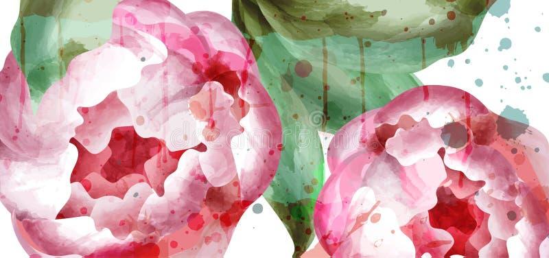 De pioen bloeit waterverfvector Huwelijksuitnodiging, ceremonie, gevoelige prentbriefkaar, de groetkaart van de Vrouwendag Mooi royalty-vrije illustratie