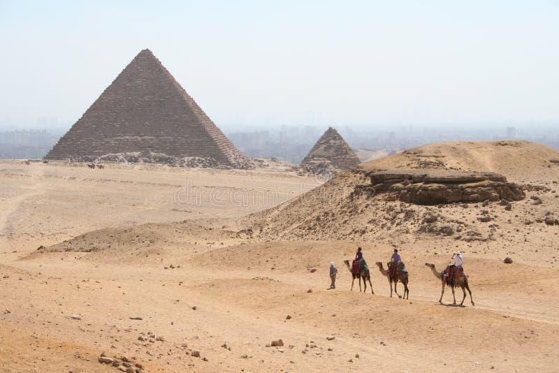 De piramides in Gaza stock afbeeldingen