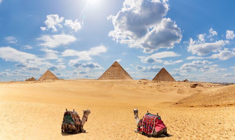 De Piramidespanorama van Egypte met twee kamelen onder de wolken royalty-vrije stock foto's
