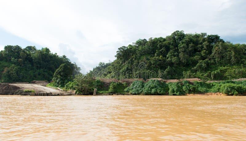 De plaats van het houtregistreren langs de rivier van Sarawak Rejang stock foto