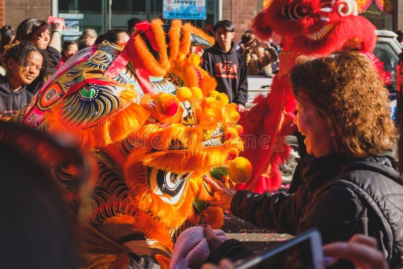 De plaatselijke bewoners die met leeuw interactie aangaan dansen uitvoerder royalty-vrije stock foto's