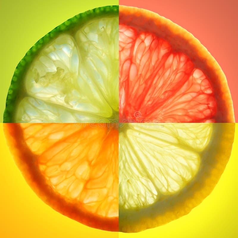 De plak van de citrusvrucht