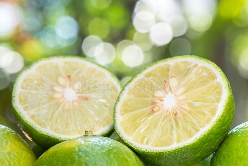 De plak van de close-upkalk met groen aardonduidelijk beeld stock afbeeldingen