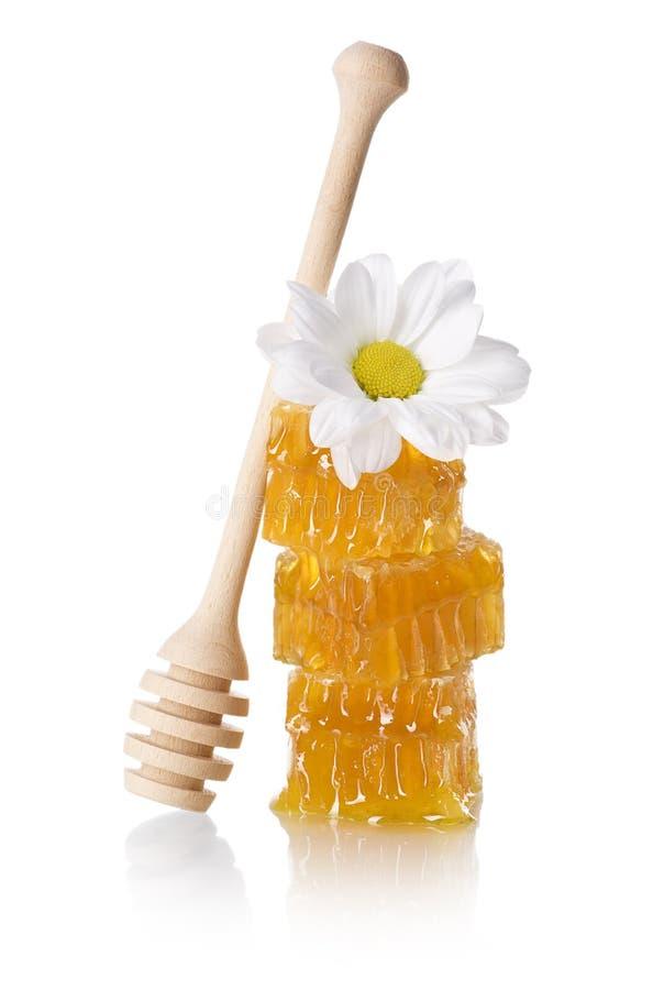 De plak van de honingraat met honingsdipper royalty-vrije stock afbeelding