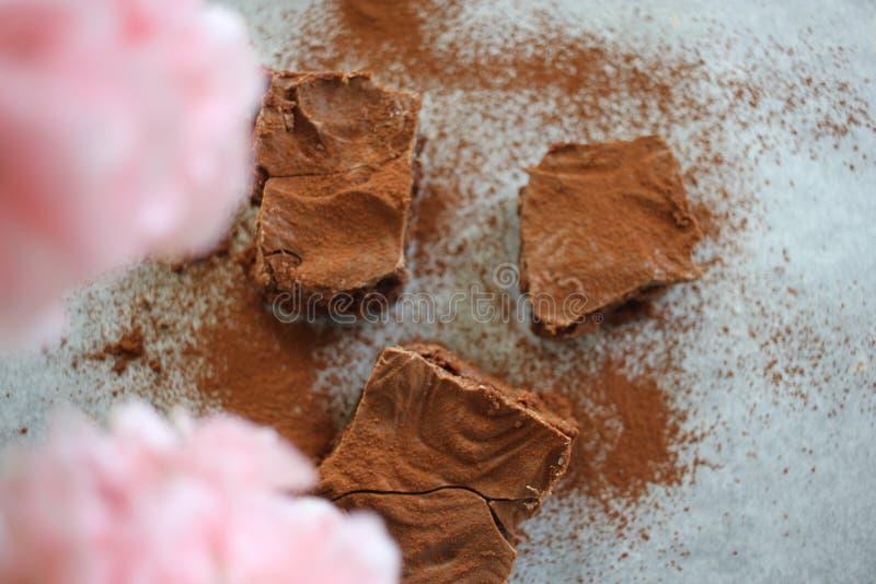 De plakken van de chocoladecake royalty-vrije stock foto's