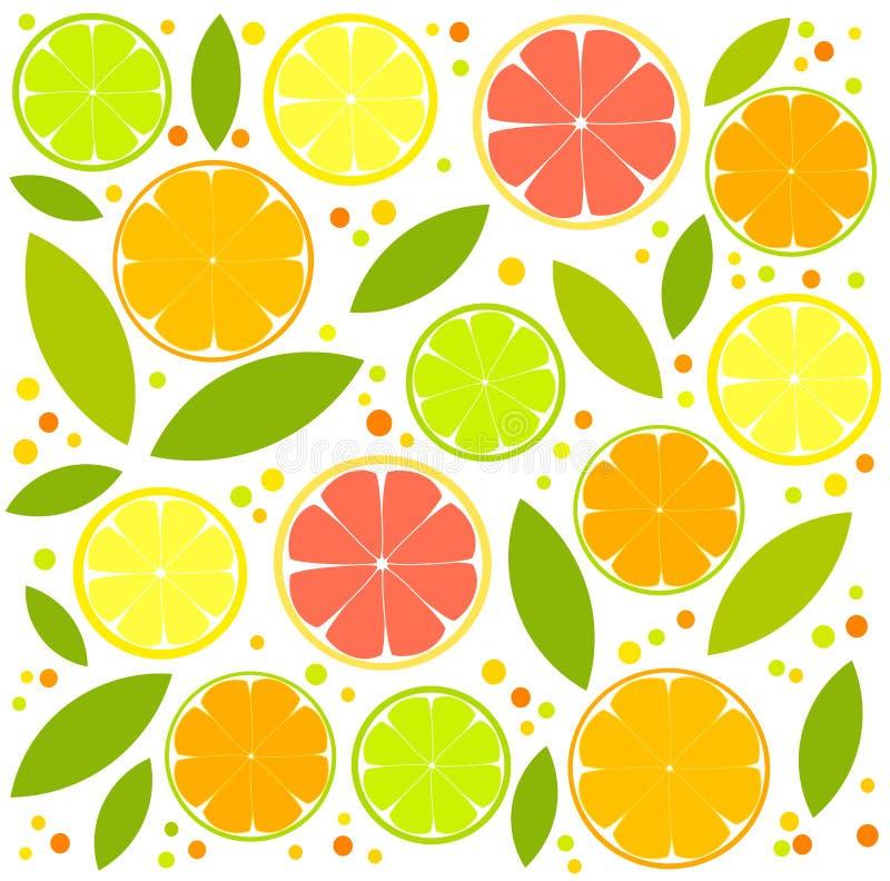 De plakken van de citrusvrucht stock illustratie