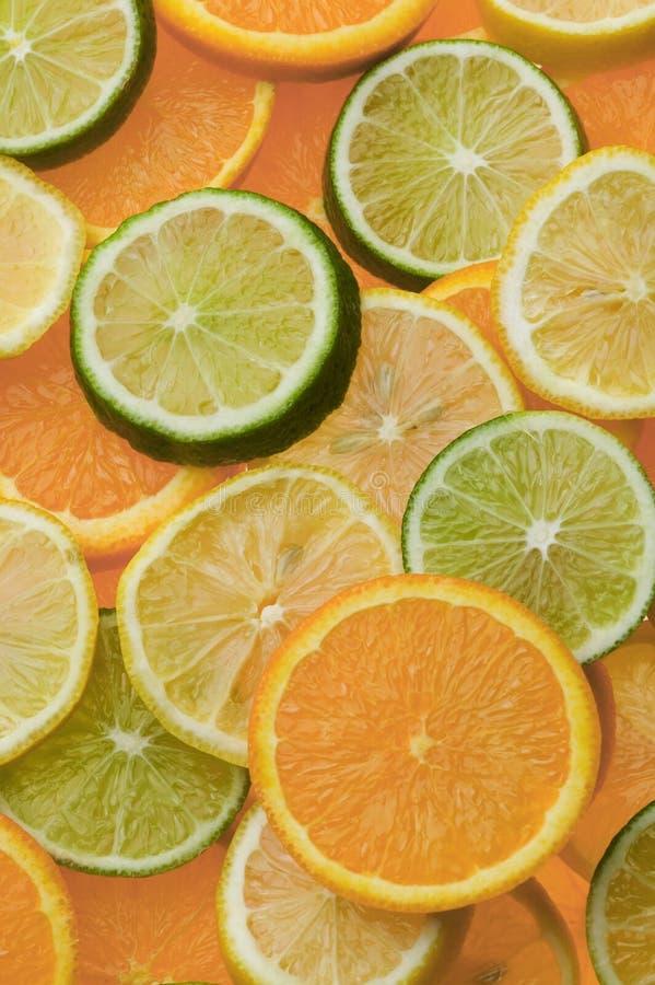 De Plakken van de citrusvrucht stock afbeelding