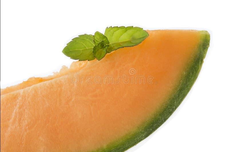 De plakken van de kantaloepmeloen met exemplaarruimte royalty-vrije stock afbeelding