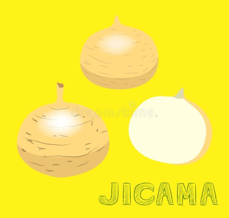 De plantaardige Vriendelijke Vectorillustratie van Jicama royalty-vrije illustratie