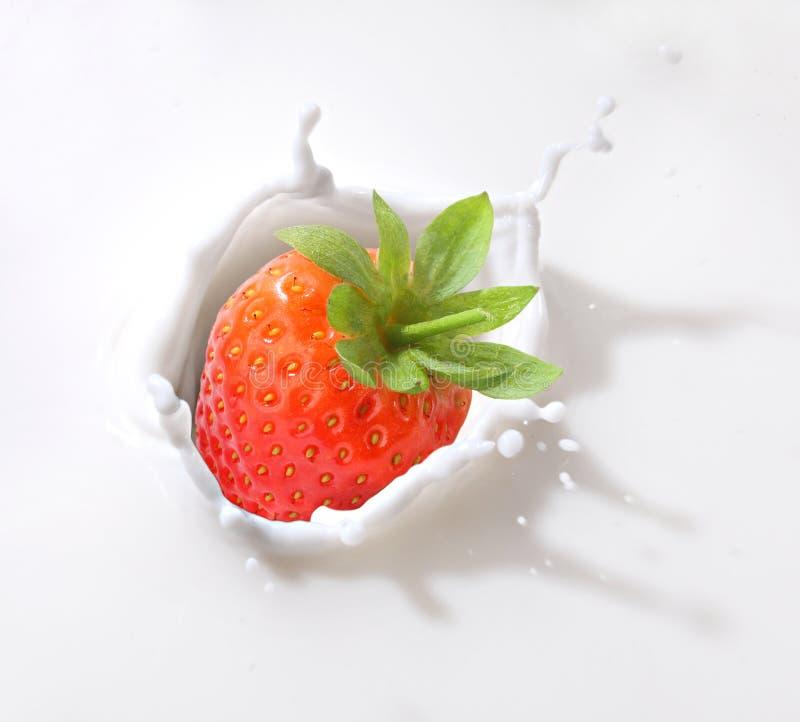 De plons van de aardbei in melk royalty-vrije stock foto