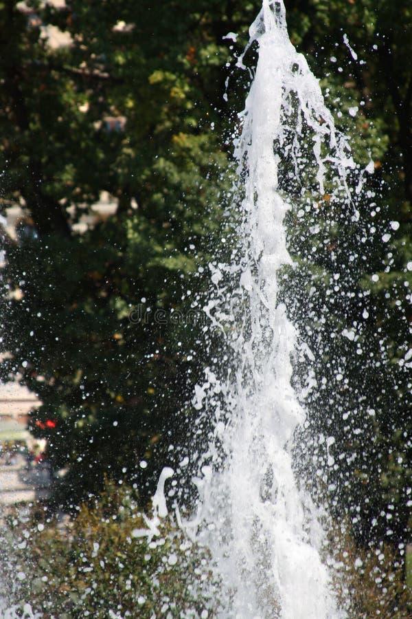 De plons van het water tegen groen gebladerte royalty-vrije stock afbeeldingen
