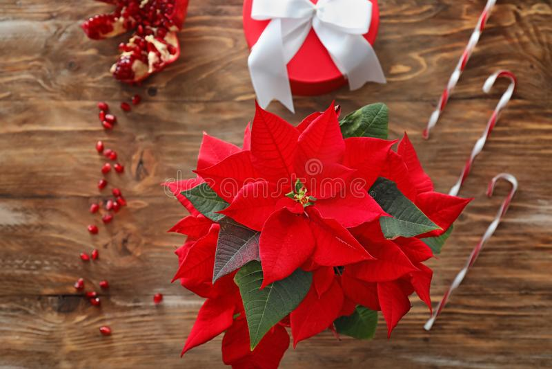 De poinsettia van de Kerstmisbloem op houten lijst royalty-vrije stock foto