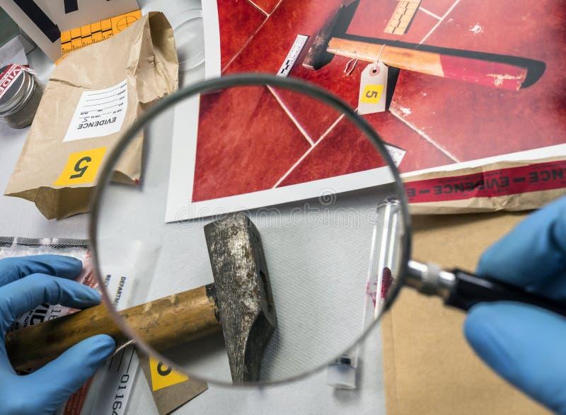 De politiewetenschapper analyseert hamer van misdaadsc?ne bij laboratoriumcriminoloog stock afbeeldingen