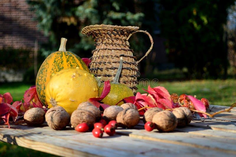 De pompoen van de herfstgroenten, noten en gevlechte kruik royalty-vrije stock foto's