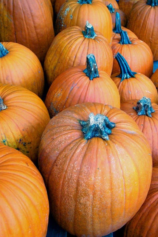 Download De Pompoenen van Halloween stock afbeelding. Afbeelding bestaande uit dessert - 26319
