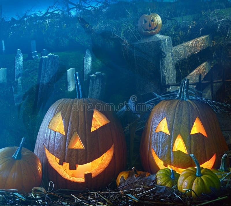 De pompoenen van Halloween in de ernstige werf stock afbeeldingen